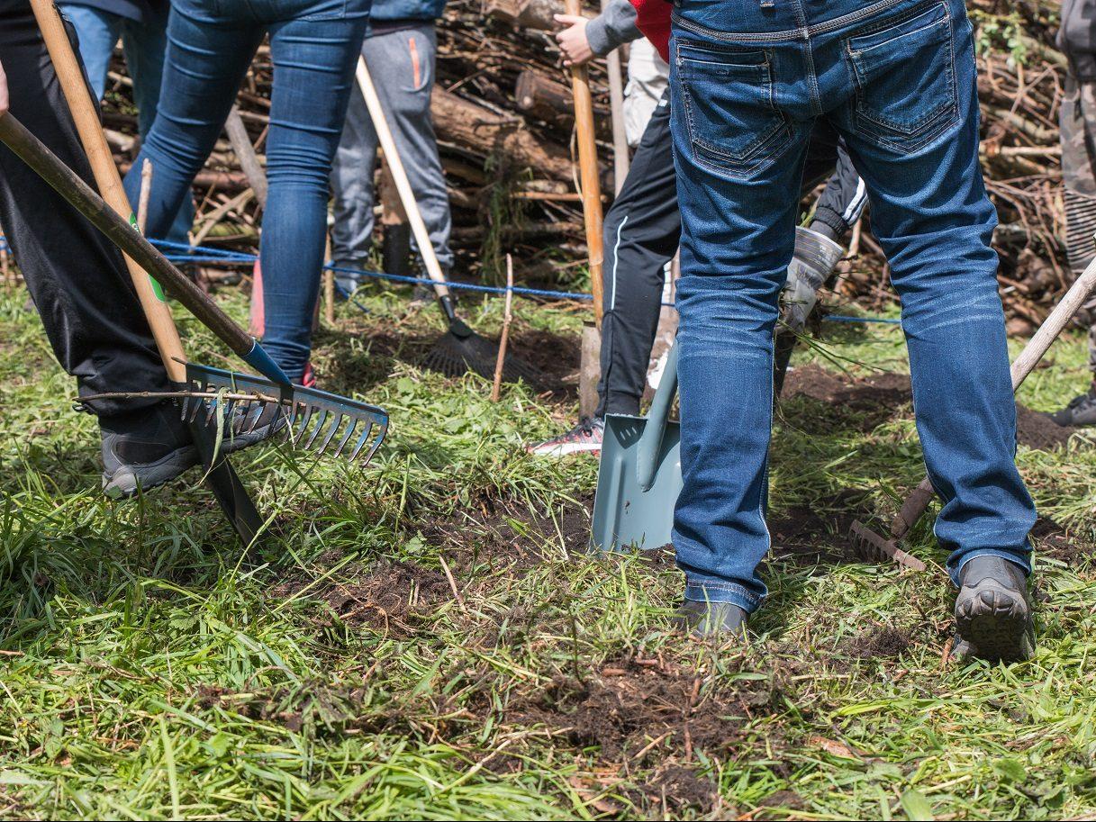 Ehrenamtliche helfen bei der Anlage einer Totholzhecke